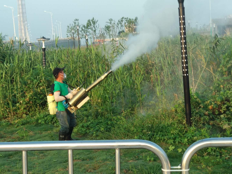 秋晚现场烟雾机消杀芦苇区蚊蝇